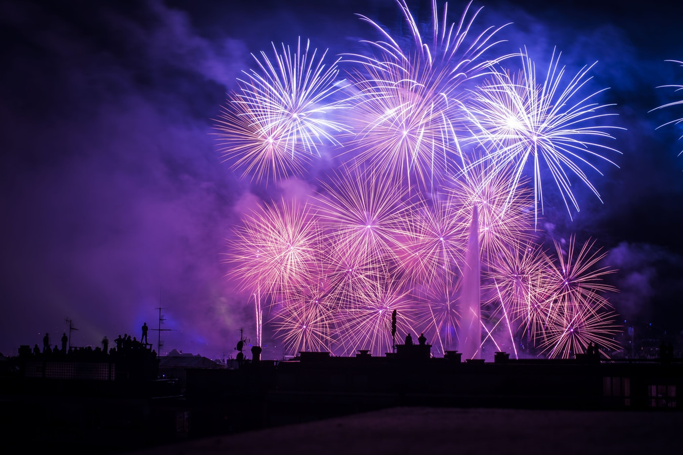 Our Advice to Keep Pets Calm During 'Fireworks Season'