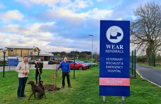 Pet Memorial Tree-Planting Scheme Launched by Wear Referrals